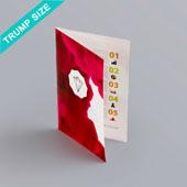 Bi-fold booklet for Trump size 2.45